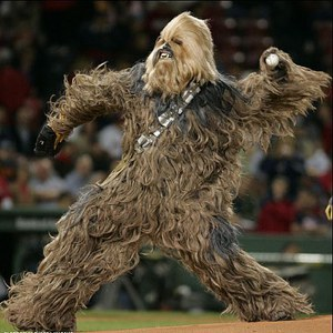 Team Page: Wookie of the Year